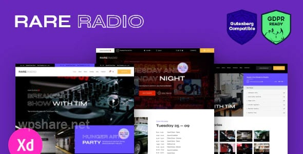 Rare Radio | Online Music Radio Station & Podcast WordPress Theme v1.0.2