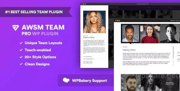 The Team Pro 1.9.1 – Team Showcase WordPress Plugin