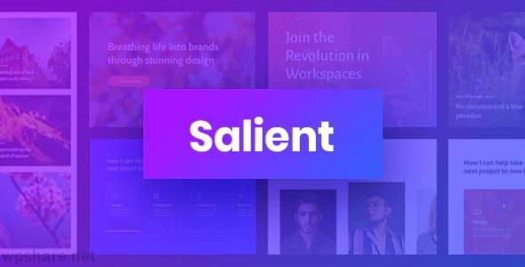 Salient 13.0.7 – Responsive Multi-Purpose WordPress Theme