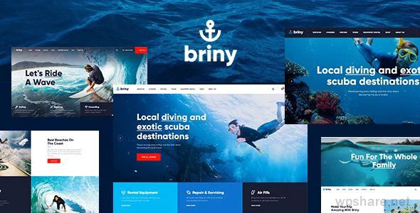 Briny 1.2.2 – Scuba Diving School & Water Sports WordPress Theme + RTL