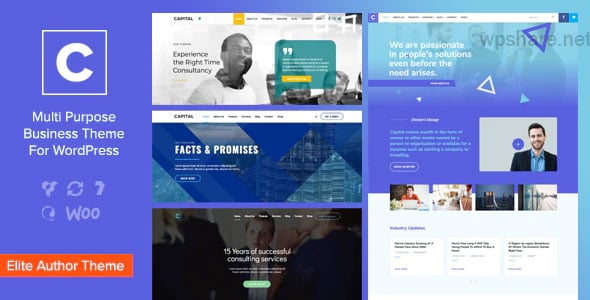 Capital 2.3 – Multi Purpose Business WordPress Theme