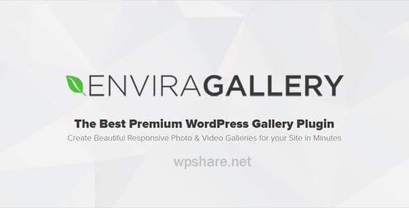 Envira Gallery v1.9.22 + Addons