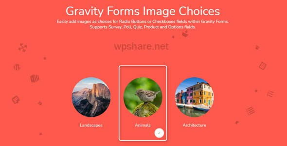 Gravity Forms Image Choices v1.3.27