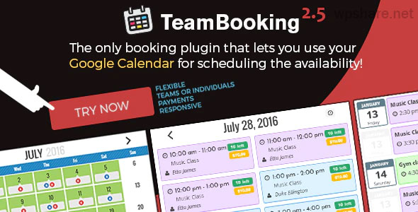 Team Booking 2.5.11 – WordPress booking system