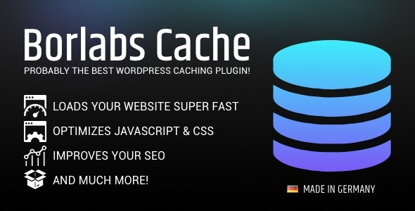 Borlabs Cache 1.6.3 – WordPress Caching Plugin