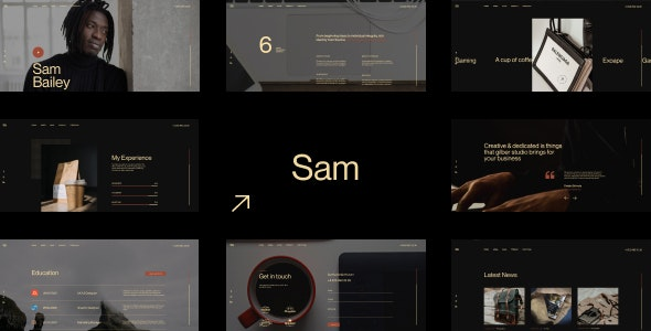 Sam Bailey 1.0 – Personal CV/Resume WordPress Theme