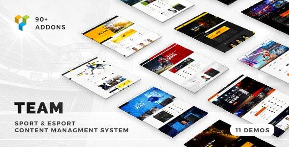 Team 5.0.17 – Soccer, Football, Hockey, Basketball Club & eSport Gaming WordPress Theme
