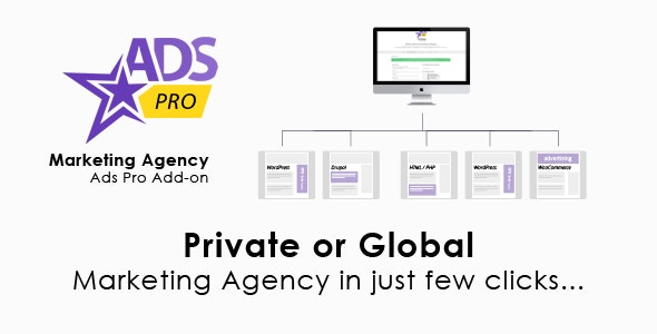 Ads Pro Add-on 1.1 – WordPress Marketing Agency