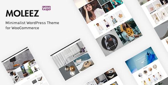 Moleez 2.3.11 – Minimalist WordPress Theme for WooCommerce